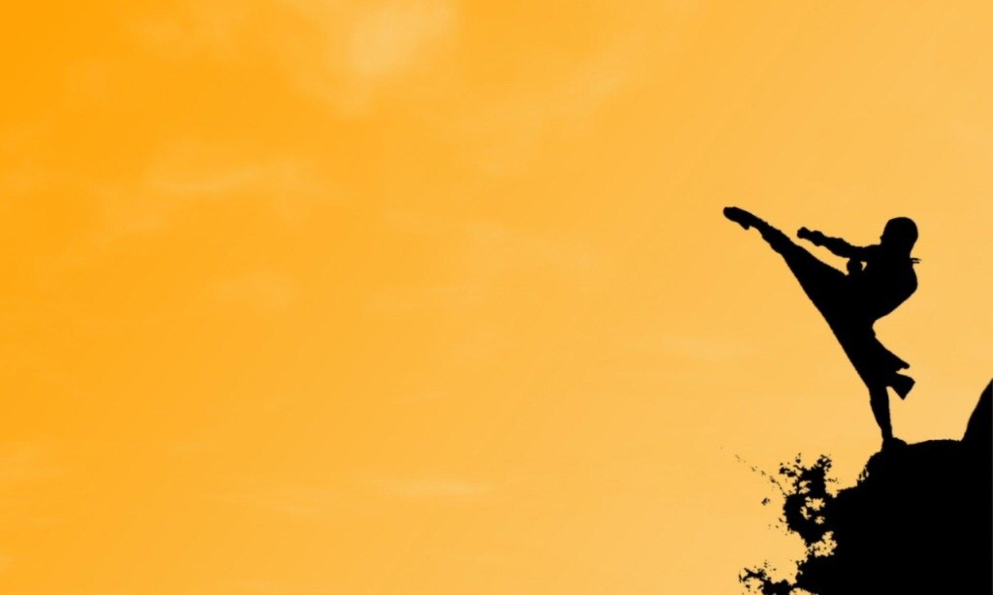 Karaté graylois